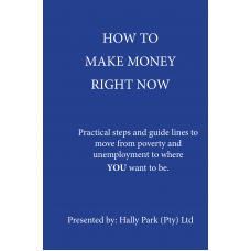 How to make money right now Paperback