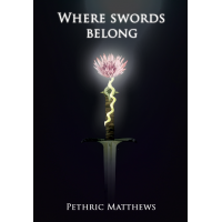 Where Swords Belong Book 1 Paperback