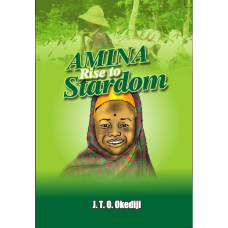 Amina Goes To School eBook